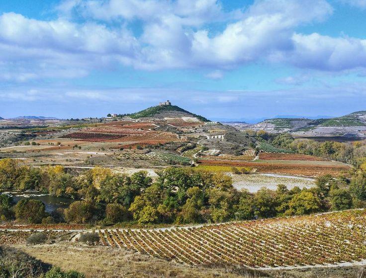Nunca me canso de disfrutar de este paisaje de Rioja. Espectacular en otoño#tourism #winetours #travel #wine #winelover #turismo #enoturismo #experience #winetastelovers #riojawine #gastronomía #visitSpain #vino #viaje #tapas #winetasting #instariojawine #gastronomy #instawinetours #winecountry #wineries #worldplaces #winetrip #winetravel #viajar #grapevines #winetourism #winetourist #lp