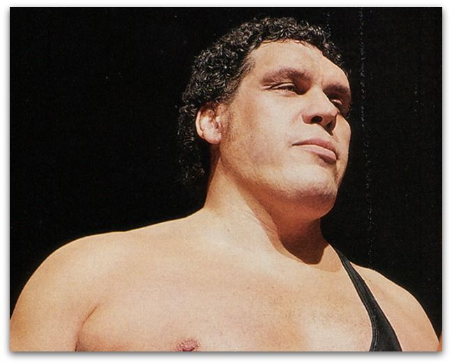 André René Roussimoff passed away in 1993 but he remains one of the world's most famous wrestlers. Here are a few facts about the gigantic French grappler.