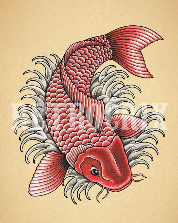 110 Best Japanese Koi Fish Tattoo Designs And Drawings Japanese Koi Fish Tattoo Koi Fish Drawing Fish Drawings