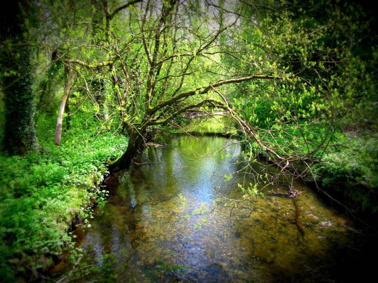 County Kilkenny. Ireland