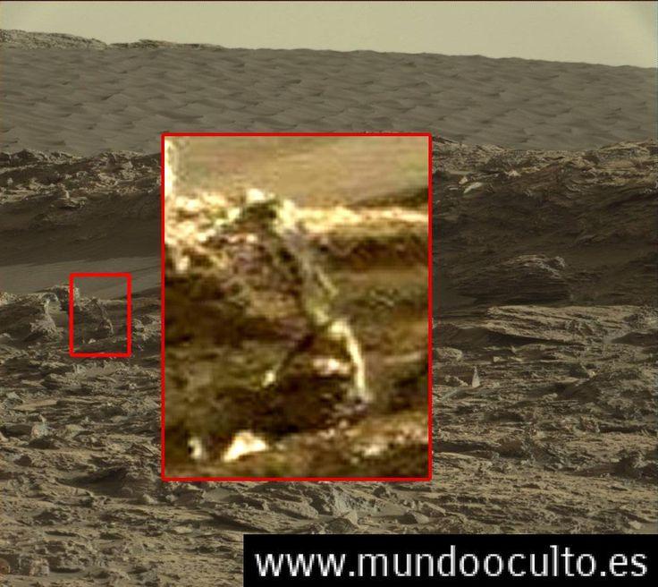 La prueba: Es esta la imagen de un ser vivo en Marte?