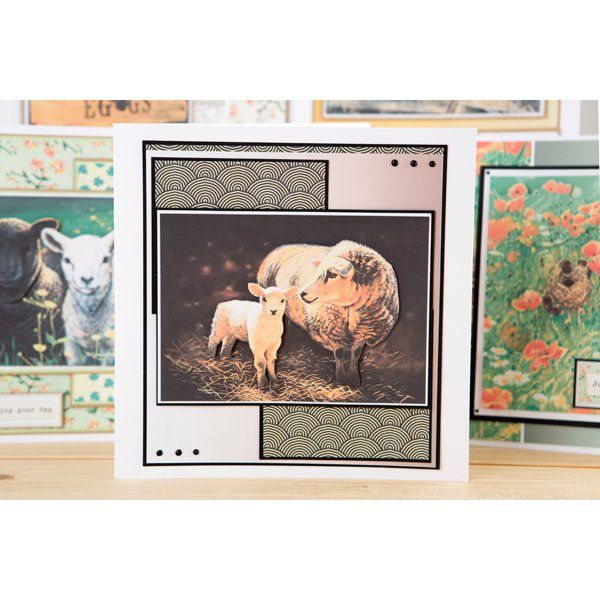 Pollyanna Pickering Farmyard Days Multibuy (385322) | Create and Craft
