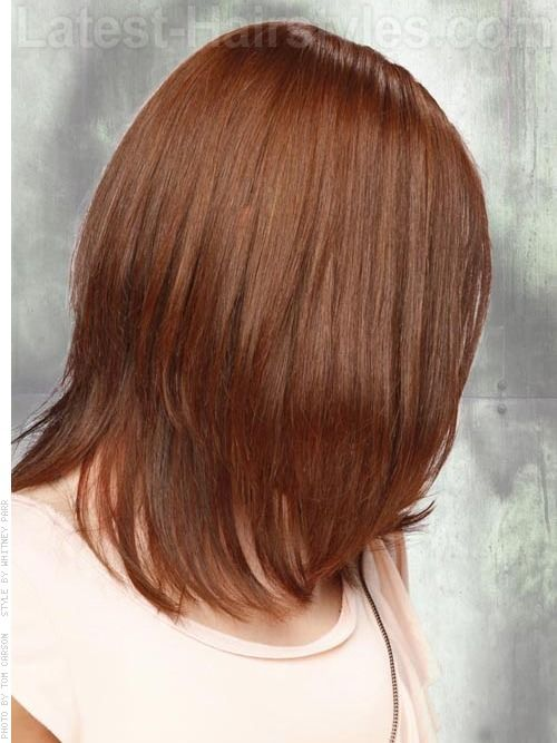 reddish brown hair with blonde highlights - Google Search