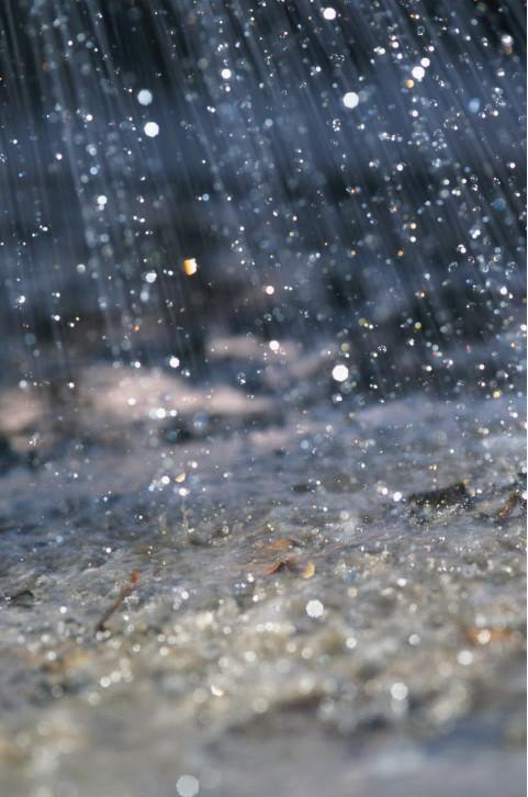 Rain by David De Lossy