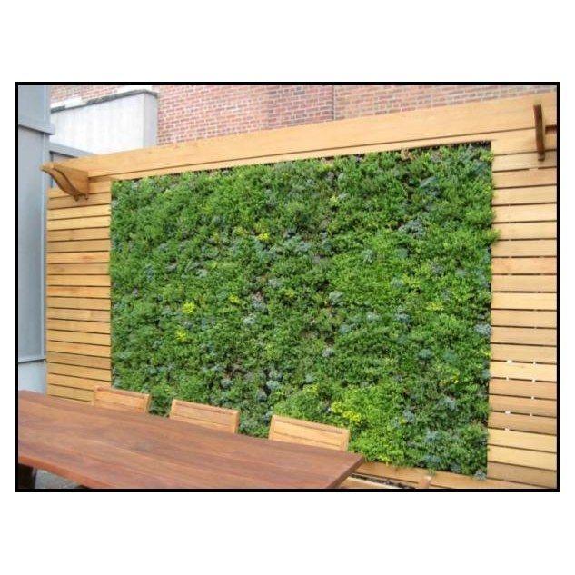 Vertical Garden Ideas Australia 184 best garden images on pinterest | landscaping, gardening and