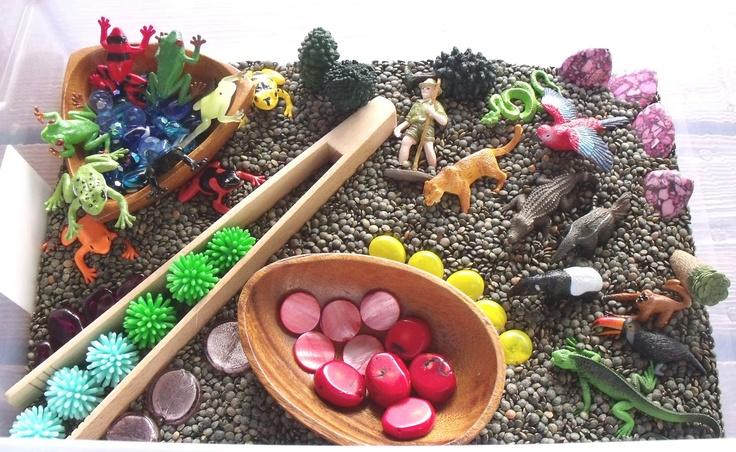 Nurturing Naters with Preschool at home + Montessori activities: Rainforest sensory tub, Rainforest Preschool Theme Rain Forest