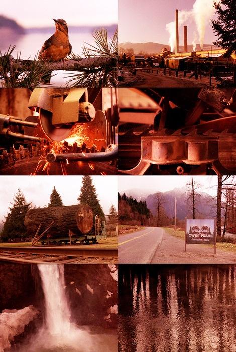 David Lynch | Twin Peaks