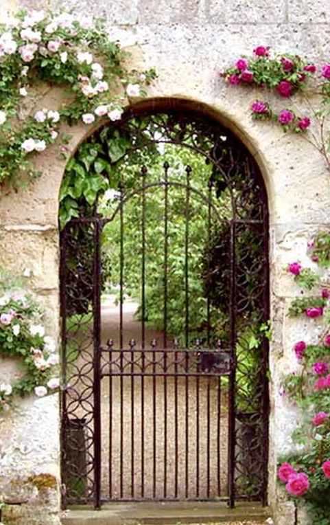 Best 25 Iron Gates Ideas On Pinterest Wrought Iron
