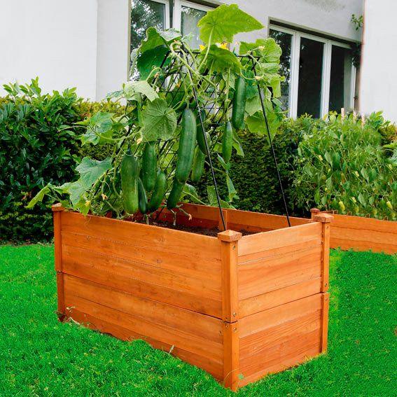 Rankgerust 110x50x85 Cm Online Kaufen Bei Gartner Potschke Hochbeet Gartenbedarf Und Gemuse Anpflanzen