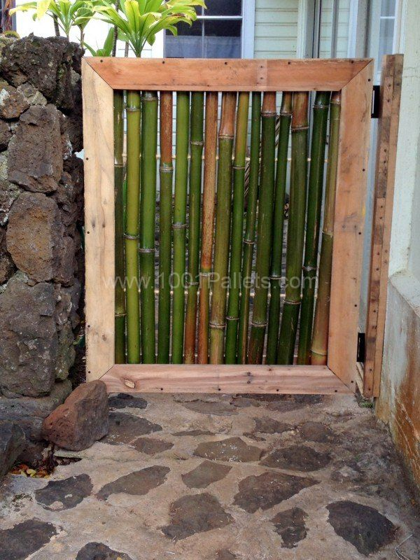 gate made from bamboo shoots and a pallet!