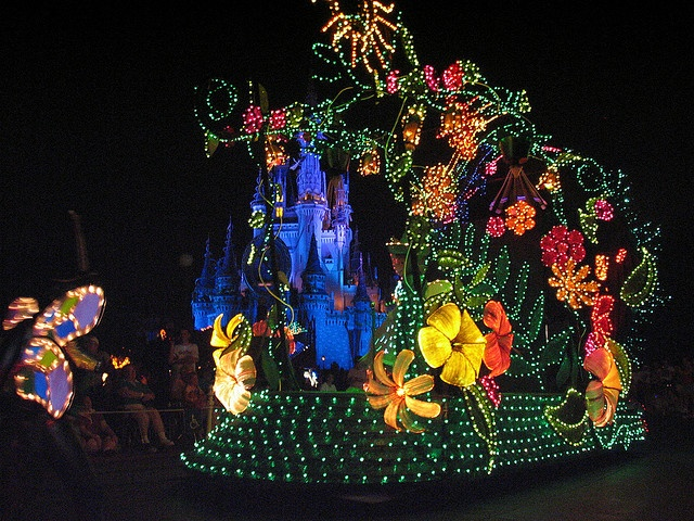 Disney light parade. If you have been...bucket list it!
