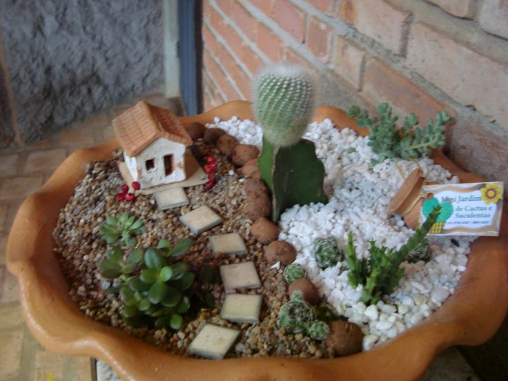 25+ melhores ideias sobre Minijardins no Pinterest ...
