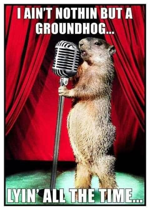 """Image result for i ain't nothing but a groundhog lying all the time"""""""