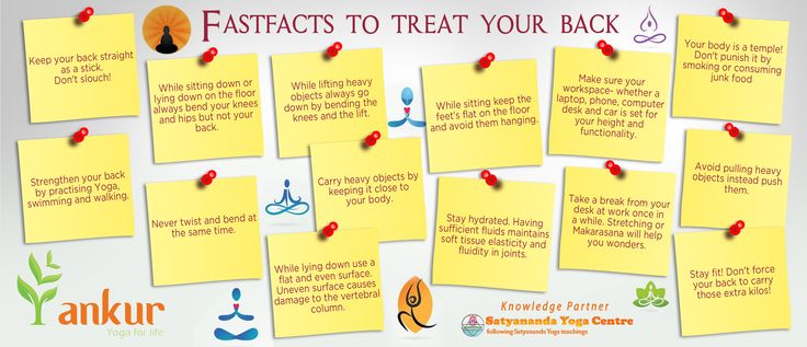 14 steps to take care of your ‪#‎backbone‬ easy to ‪#‎follow‬. - Ankur Learning Solutions Pvt Ltd14 steps to take care of your ‪#‎backbone‬ easy to ‪#‎follow‬. - Ankur Learning Solutions Pvt Ltd Inspired by - Satyananda Yoga Centre - Triplicane Inspired by - Satyananda Yoga Centre - Triplicane
