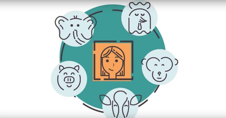 Animal Charity Evaluator's new explainer video!