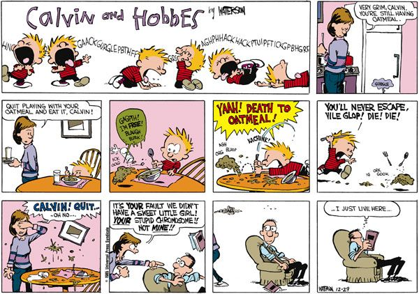 Your Stupid Chromosome Not Mine Calvin And Hobbes