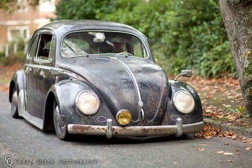 scotti black beetle by chriz quick photography front with tree