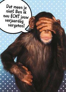 Verjaardagskaarten te laat - Echte kaarten maken & versturen | Hallmark.nl
