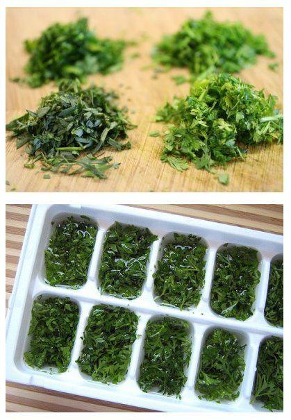 Congélation des herbes aromatiques ou fines herbes