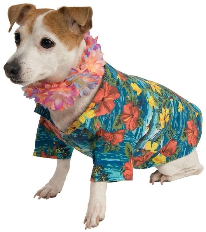 Pet Costume: Luau Costume MediumCute little flowered shirt with lei collar.Size: MediumPet Costume