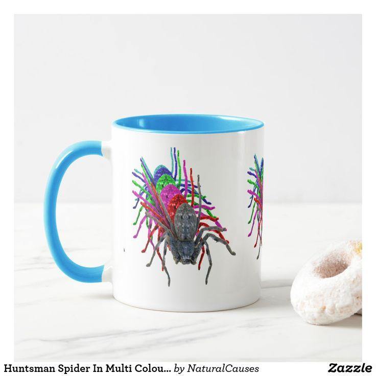 Best 25+ Huntsman Spider Ideas On Pinterest