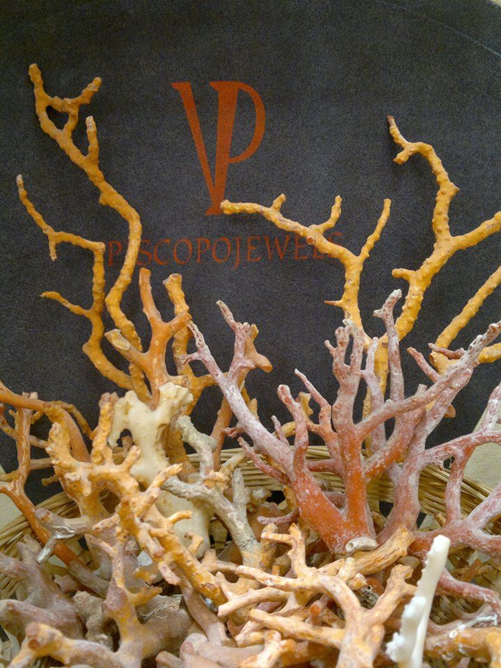 Coral Branches