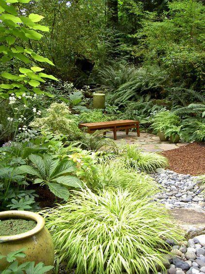 Garden Combo for a Shady, Wet Site -Rodger's flower, golden variegated sweet flag, Japanese forest grass. Golden catalpa & masterwort -by Bliss Garden Design