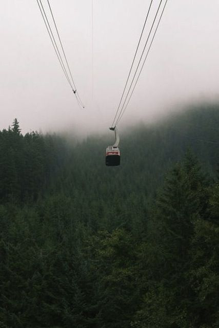 the wilderness hold answers to questions we have not yet learned to ask / / Grouse Mountain, Vancouver, BC