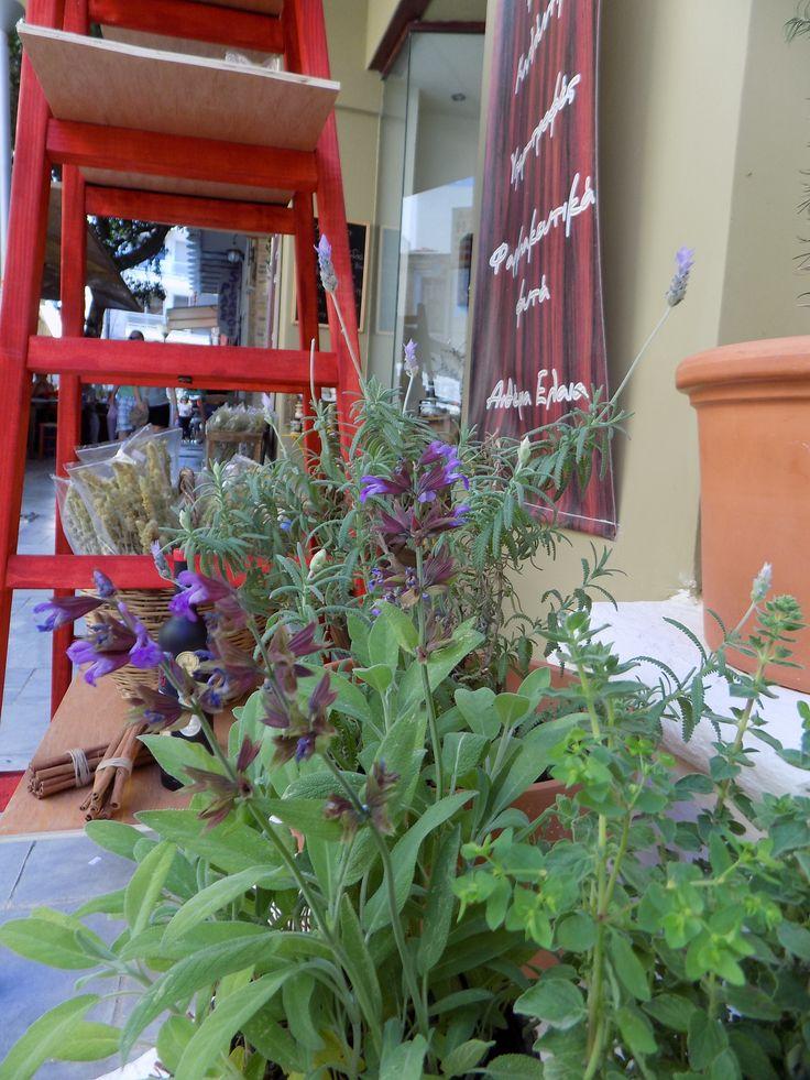 #faskomilo# Cretan Herbs