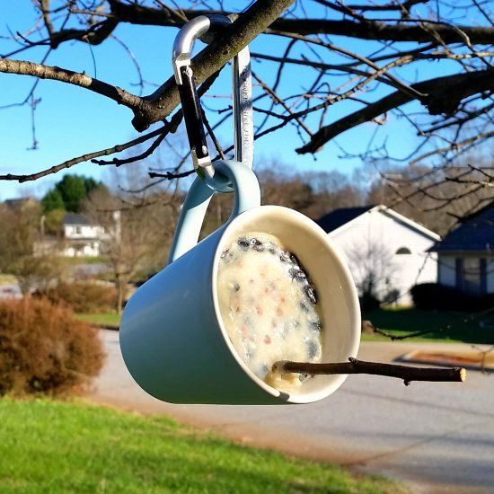 Create a simple and inexpensive suet feeder for your winter birds using a thrifted coffee mug and a stick as a perch!
