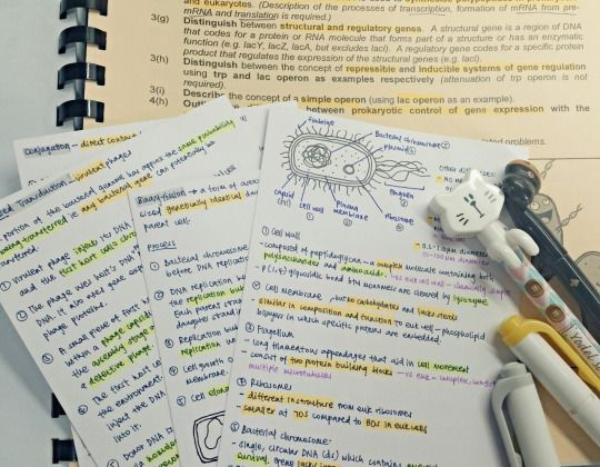 studymuch: more biology flashcards! Moving on to chemistry next…