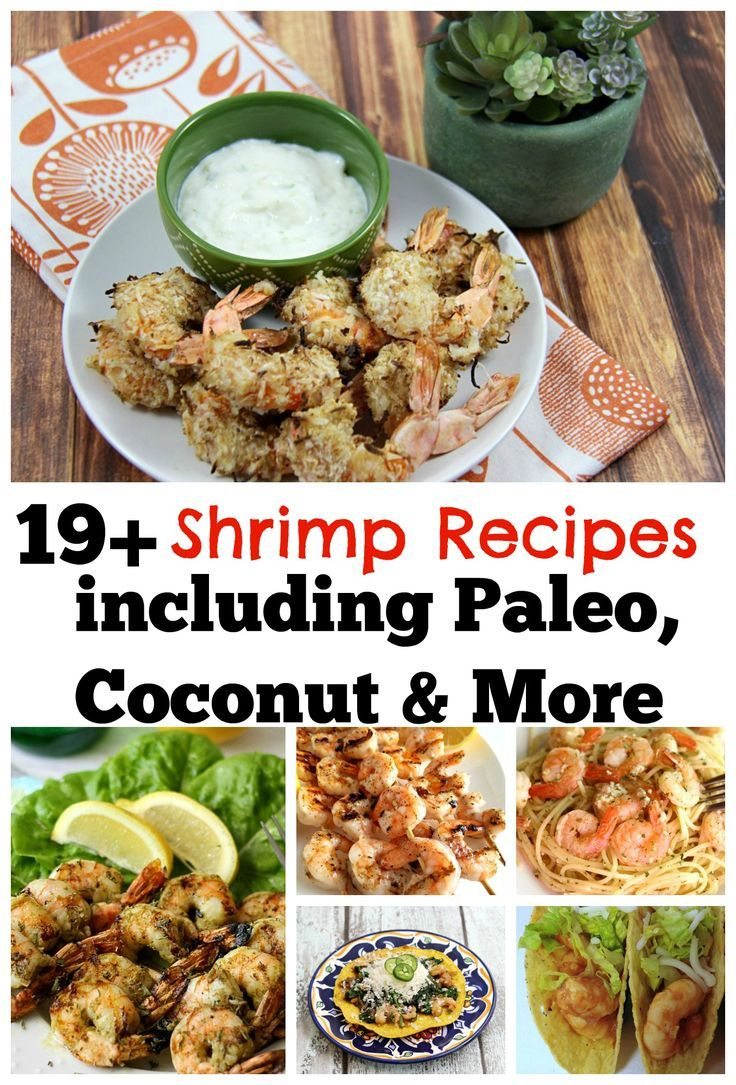 19 Shrimp Recipes Including Paleo, Coconut Rum, Shrimp Scampi, and More! Also included is my copycat Longhorn Wild West Shrimp. Which recipe will you try first? #Shrimp #Paleo