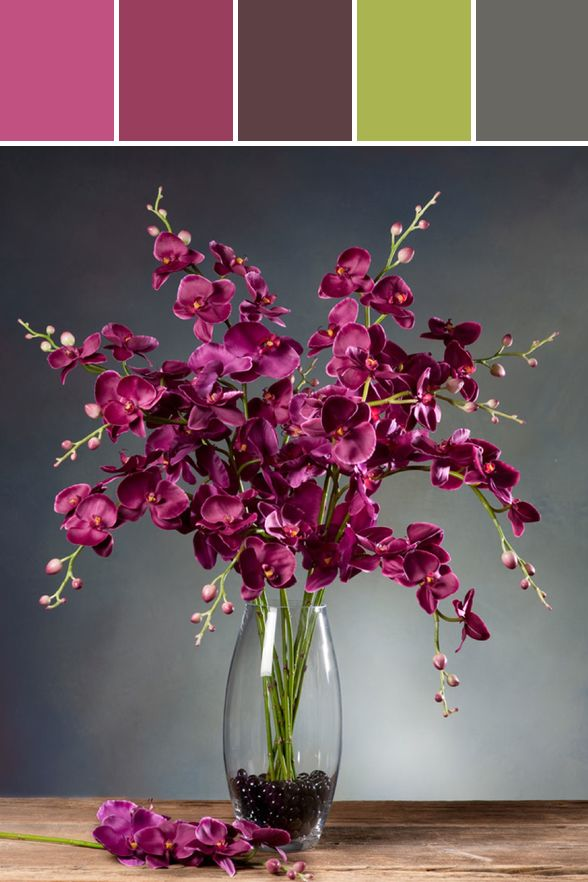 Phalaenopsis Orchid Silk Flower Stem - Fuchsia Designed By Silkflowers.com via Stylyze