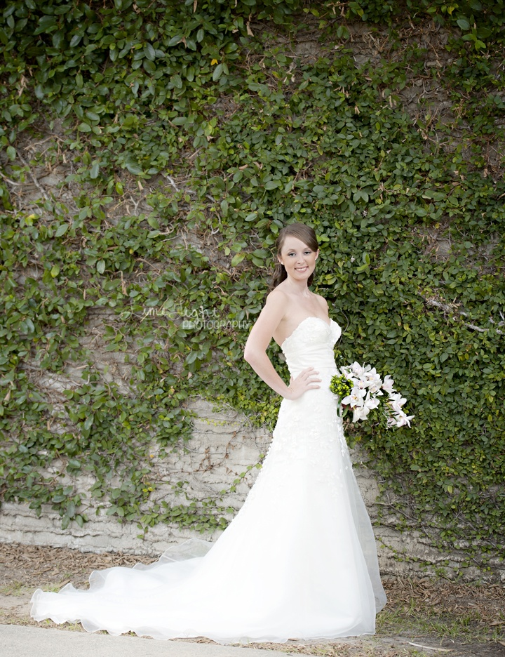 1000 ideas about bridal portraits outdoor on pinterest for Wedding dresses kingsport tn