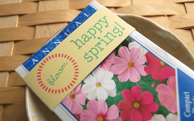 It's a free template for a packet of seeds... could be a great party favor for our Easter dinner!