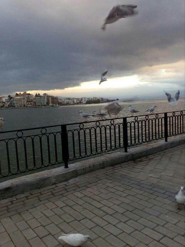 Πρωινό στην παραλία της  Χαλκίδας..