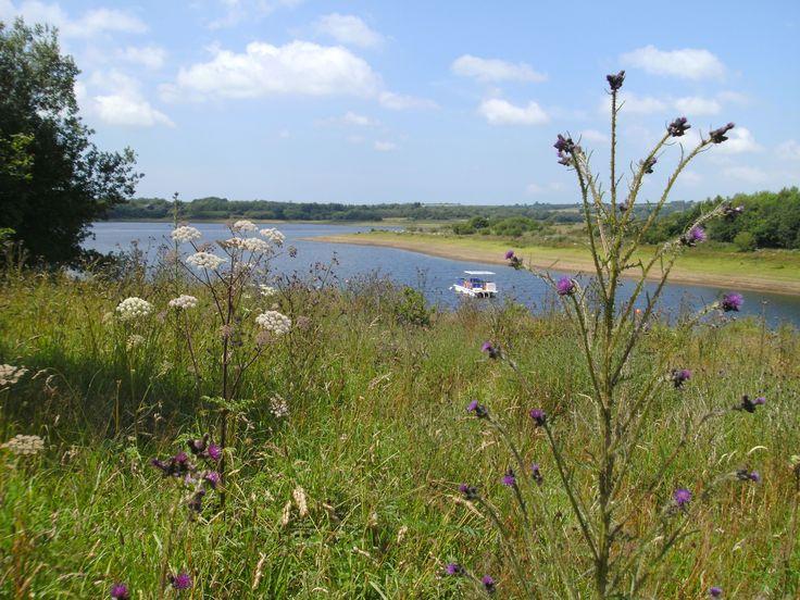 Roadford Lake .by Angela C.
