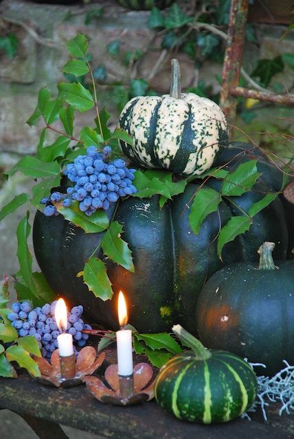 Green Pumpkins for an Autumn Display by Sonja Bannick Pictures. #Fall #Pumpkins