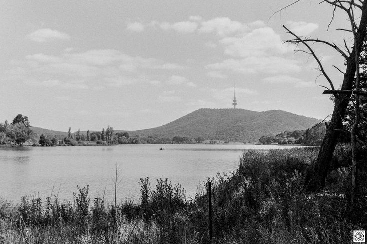 https://flic.kr/p/FE16PH | landscape | My Canberra - on film mainly around Yarralumla, back in 2014  ... morning lake and Black Mountain ...  Olympus Mju 2, Kodak T-Max 100  www.pavelvrzala.com