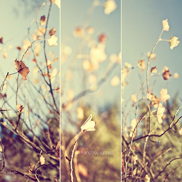 : 0 Life Is Beautiful