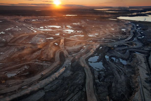 Scraping Bottom - Once considered too expensive, as well as too damaging to the land, exploitation of Alberta's oil sands is now a gamble worth billions.