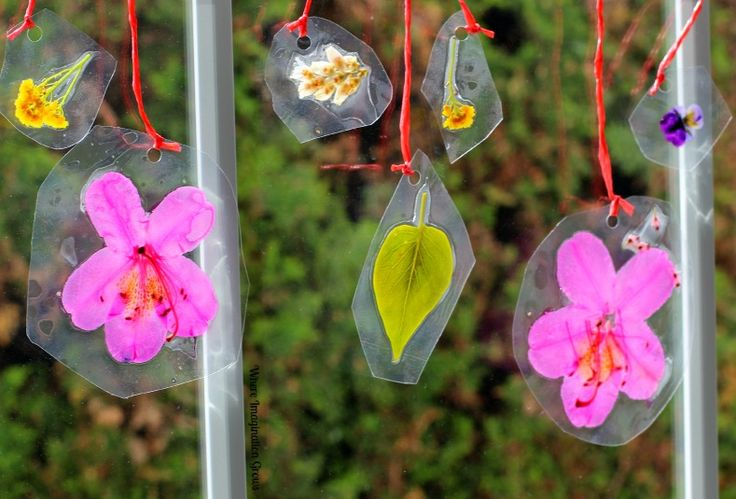 Lovely Spring Nature Suncatchers | You will love learning how to make craft suncatchers so much, and you won't be able to take your eyes off them when you're done.