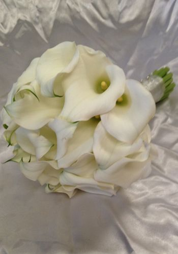White Calla Lily bouqeut created by The Wild Orchid  Florist, Echuca Victoria. 0354806777 #whitecallalilies #thewildorchid #weddingbouquet