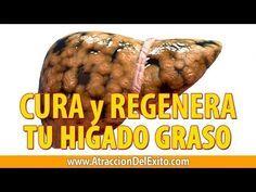 Cómo Limpiar, Curar y Regenerar el Higado Graso con 12 Remedios Naturales y Caseros - En 7 Días! - YouTube