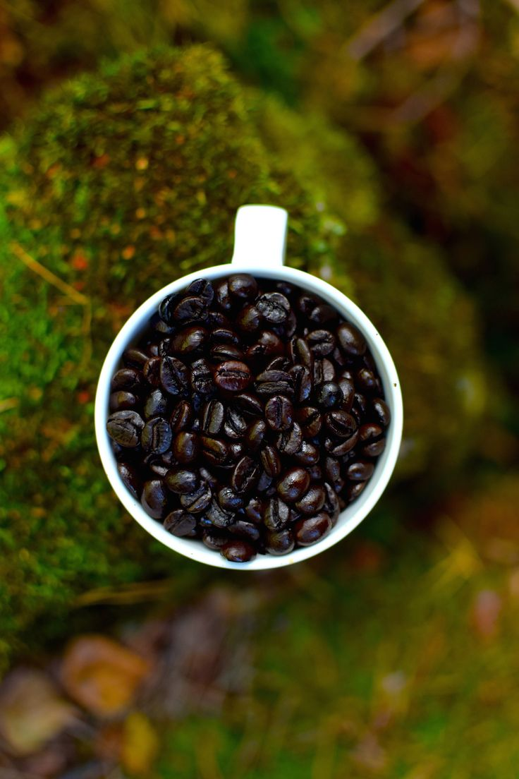 Kick! The ultimate awakener. Very dark, very bold and full of caffeine. After that you won't be sleeping!