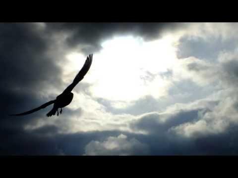 Mielen rentoutus - Sisäinen vapautuminen - YouTube