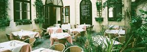 An upmarket traditional bistro is Schnattl in the 8th district. Fine Viennese classics and a pretty courtyard await guests here.