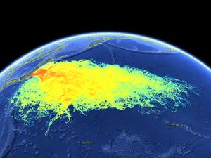 """Nuclear Engineer: """"Alarm bells"""" are going off over Fukushima plume coming to US West Coast — People will be dying from radiation that's flowing across Pacific — Massive amounts of nuclear waste are flowing into ocean every day, and will for more than a century — """"We've contaminated the biggest source of water on planet, and there's no way to stop it"""" (VIDEO)…"""
