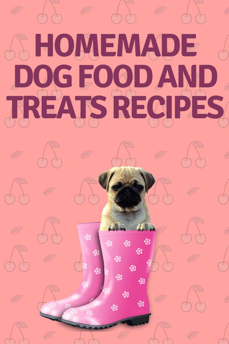 Homemade Dog Food and Treats Recipes