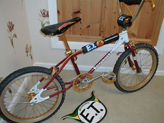 17 best images about bmx bikes from the 1980s on pinterest for Bmx store